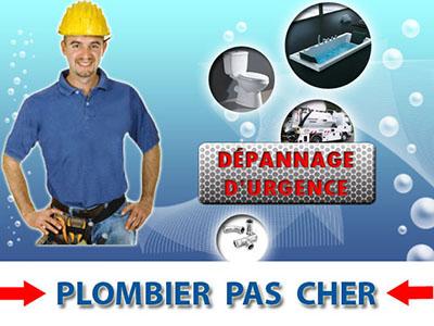 Canalisation Bouchée Survilliers 95470