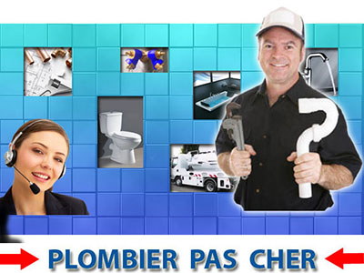 Toilette Bouché Aubergenville 78410